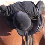 Asociación Vine a Cavall