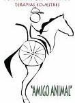 Cursillo Estimulación de aspectos básicos de la comunicación  a través del trabajo asistido con caballos para personas con trastorno del espectro autista