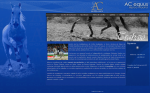 AC equus- Hípica Madrid