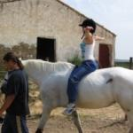 Resultados obtenidos en la aplicación de terapias e intervenciones con caballos